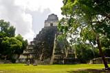 Mayan temples in Tikal, Guatemala, Central America  - 236474354