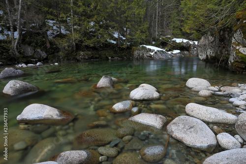 Foto Murales Tye River, WA, USA.