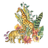 Watercolor natural exotic tropical greeting card with flowers of orchids, monstera, palm, liana, tiger, giraffe - 236490767