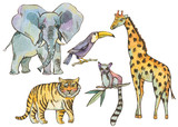 Watercolor tropical elements with elephant, tiger, giraffe, lemur and toucan - 236491302