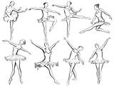 Classical ballet woman-dancers - 236496319