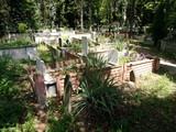 Weiße Grabsteine im Sonnenschein auf einem alten bewaldeten Friedhof in Adapazari in der Provinz Sakarya in der Türkei