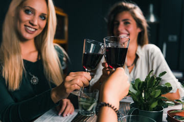 Red Wine Toasting. Female Friends Toasting With Red Wine, Having Fun.