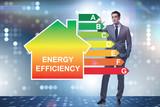 Businessman in energy efficiency concept - 236539708