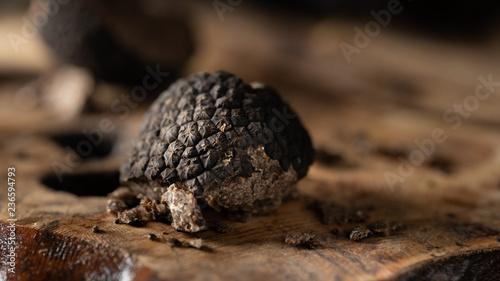 Italian black truffle - 236594793