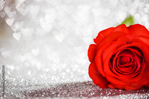 Red rose on glitters