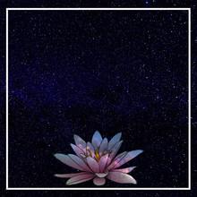 "Постер, картина, фотообои ""Cosmic lotus flower"""