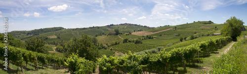 Panoramy Monferrato