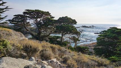 Kalifornien © Daniel