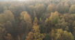 Aerial view over autumn forest in the morning