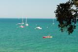 bateaux acostés près de l'île de Noirmoutier