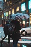 Rainy street corner