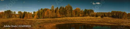 Landscape in rico - 236908122