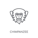 chimpanzee linear icon. Modern outline chimpanzee logo concept on white background from animals collection