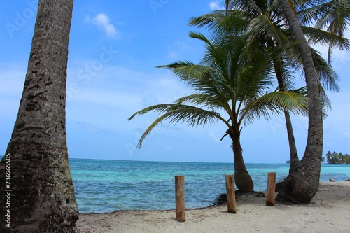 isla - 236965505