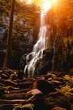 Burgbach Wasserfall Schwarzwald