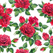 Romantic bloom - red roses flowers. Seamless floral background. Watercolor - 237014338