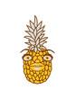 sexy girl mädchen frau weiblich gesicht lustig ananas lecker hunger essen obst gesund ernährung diät comic cartoon design clipart