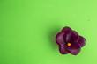 Leinwanddruck Bild - hand soap with flower shape