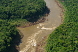 Aerial View of the River in a Tropical Rainforest