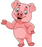 Cartoon happy pig presenting - 237105179
