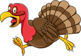 Cartoon turkey running - 237105347
