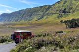 Tourists Jeep rent pass Savanna at Mount Bromo volcanoes in Bromo Tengger Semeru National Park, Java Island, Indonesia