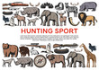 Animals and birds, weapons for hunting sport icons