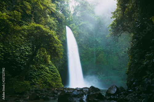 Powerful waterfall in Bali. Tropical forest and waterfall - 237227912
