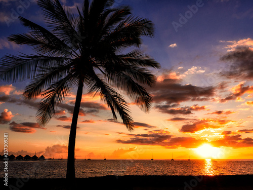 Sunset in Tahiti with Thatched Huts and Palm