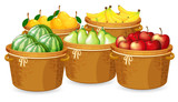 Isolated fruits in different basket - 237316300