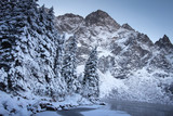 Winter mountains landscape. Snowy fir trees and rocky mountain.