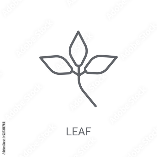 leaf icon. Trendy leaf logo concept on white background from leaf collection © BestVectorStock