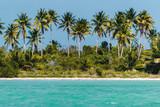 Saona Island near Punta Cana, Dominican Republic - 237325500