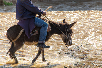 The man on the donkey crossing the river