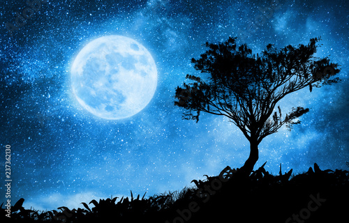 Foto Murales a magic night lanscape with starry sky