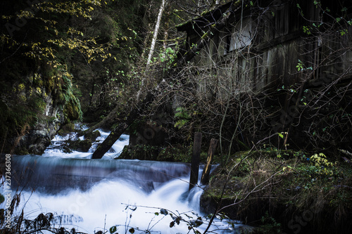 Nature - 237366308