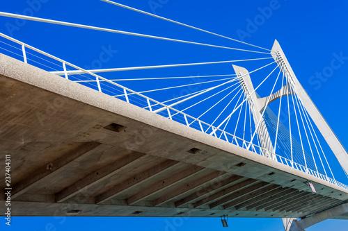 Tablier de pont à haubans, Beaucaire-Tarascon - 237404311