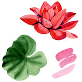 Red lotus flower. Isolated lotus and green leaf illustration element. Watercolor background illustration set.