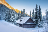 Winter mountain landscape of wooden house in snowy forest