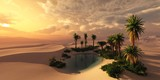 Oasis at sunset in a sandy desert, a panorama of the desert with palm trees