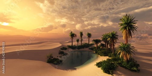 Leinwandbild Motiv Oasis at sunset in a sandy desert, a panorama of the desert with palm trees