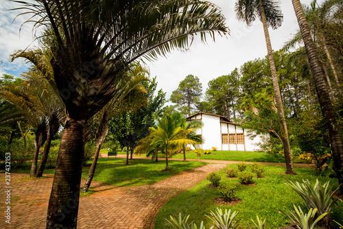 Botanical garden in brasilia, brazil