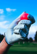A hand of golfer in glove holding a red ball. Trees, mountain, golf courses and blue sky blurred background close up.