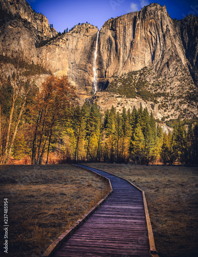 Path to Yosemite Falls, Yosemite National Park, California  - 237485954