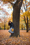 Pretty woman posing with maple's leaves in autumn park near big tree. Beautiful landscape at fall season. - 237502798