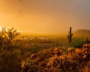 Golden Monsoon Sunset