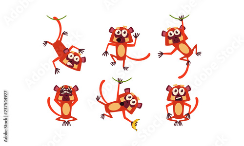 Flat vector set of funny brown lemur in different poses. Monkey with various emotions. Cartoon character of wild animal