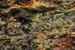 Plane of multicolored boulder. Beautiful rock surface close up. Colorful textured stone. Amazing detailed background of highlands boulder with mosses and lichens. Natural texture of mountain stone.