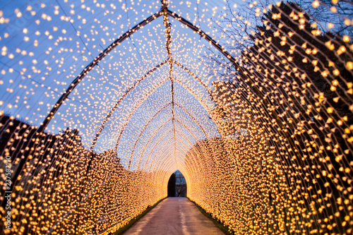 Leinwandbild Motiv Tunnel formed by Christmas lights. warm light, fairy light, lanterns creating a tunnel in the city 's Botanic garden in vinter